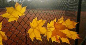 Tennis bis 30. November